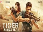 review of tiger zinda hai