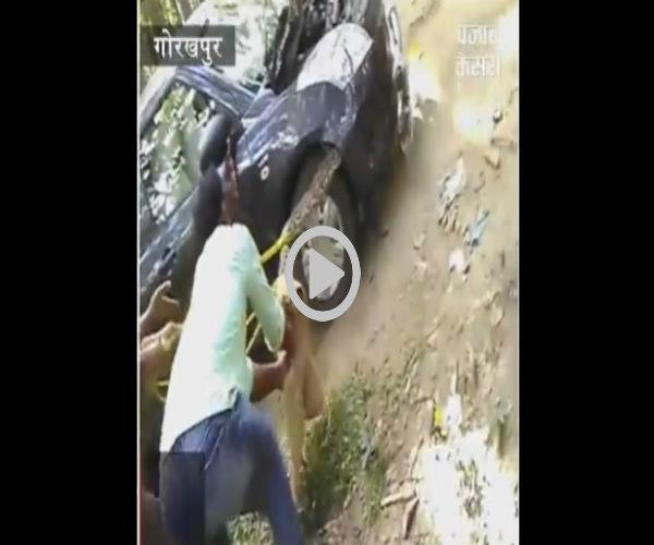 see what happened when the car got python