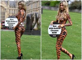 जोआना क्रूपा बाघ के लुक में बॉडी पेंट कराकर की मांग, कहा- सर्कस में बैन हों जानवर
