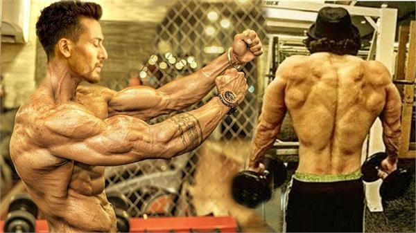 tiger shroff action in baaghi 2