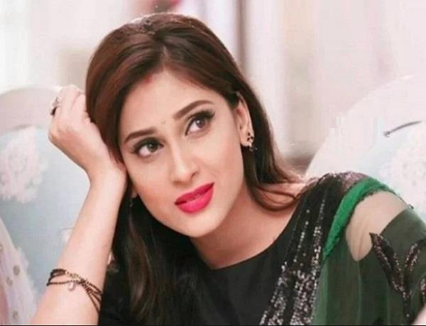 reena agarwal may replace by serial kya haal mr paanchal due to dog bite