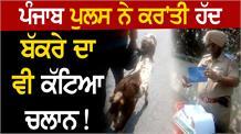 Punjab Police ਨੇ ਬੱਕਰੇ ਨੂੰ ਤੀਜੀ ਸਵਾਰੀ ਦੱਸ ਕੱਟਿਆ ਚਲਾਨ!