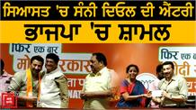 BJP ਲਈ Vinod khanna  ਦੀ ਕਮੀ ਪੂਰੀ ਕਰਨਗੇ  Sunny Deol !