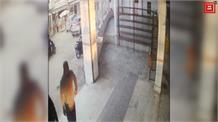 Hoshiarpurਦੇ ਪ੍ਰਾਚੀਨ ਮੰਦਰ 'ਚ ਵਿਅਕਤੀ ਦੀ ਸ਼ਰਮਨਾਕ ਕਰਤੂਤCamera'ਚ ਕੈਦ