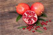imports of indian pomegranate