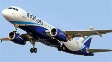 mumbai indigo airline rew member molestation