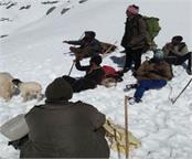 bara bhangal stranded 150 shepherds