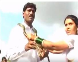 अजब गजब शादी: यहां दूल्हा-दुल्हन ने एक दूसरे को फूलों की माला के बजाय पहनाएं सापों के हार