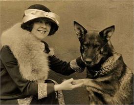 एक कुत्ते को मिलने वाला था पहला ऑस्कर अवॉर्ड, सुनिए दिलचस्प कहानी