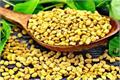 dry fenugreek is very useful for women