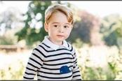 life imprisonment for the conspiracy to kill prince george