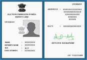 your voter id card can be made online