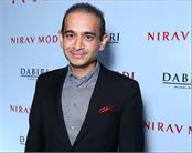 non bailable warrant against nirav modi s wife