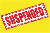 paddy  market committee  suspend  chandigarh