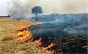 farmers wheat fire