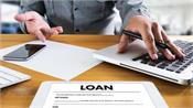 central reserve bank loan restructuring banks fees interest