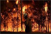 bushfire australia kills elderly couple