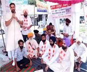 sangrur defenseless animals hunger strike