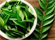 curry leaves  stomach  infections  eyes