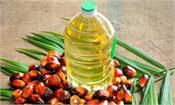 government reduces import duty on crude palm oil