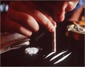 himachal is becoming drug capital