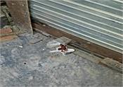 municipal corporation  shop seal  moga