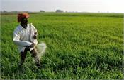 govt cuts subsidy for non urea fertilisers