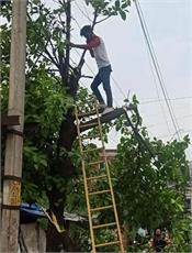 electricity consumers great relief