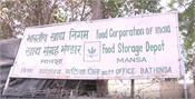 in mansa  fci officials are giving money for dumping rice