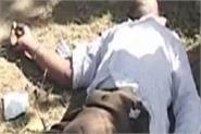 amritsar  drug overdose  12 death