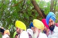 punjab floods bhagwant mann dharamkot
