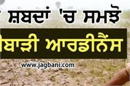 agriculture ordinance simple terms think