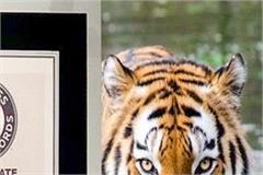 india 2018 tiger census guinness book of records prakash javadekar
