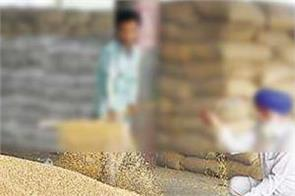 central government paddy records procurement ready