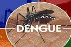 the number of dengue patients in ludhiana crossed 2700