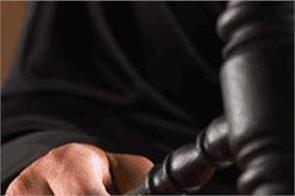 high court  contractor  tender