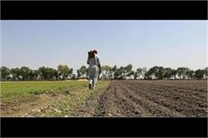punjab government defaulter farmer debt waiver