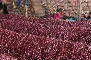 pune  thieves 2 600kg produce onions