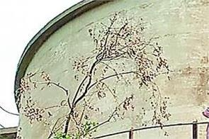 maur mandi shagun scheme  person  water tanki