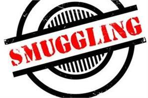 drug smuggling in chandigarh