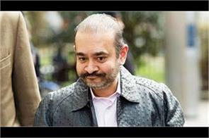 nirav modi threat    if india hands over  i will commit suicide