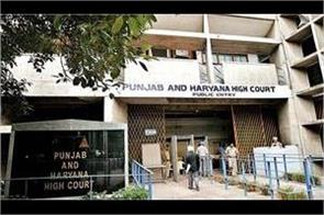 punjab   haryana highcourt