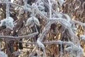 record cold in rajasthan mercury reaches minus