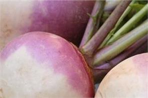 turnip vegetable