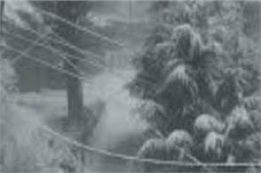 himachal pradesh year last day snowfall