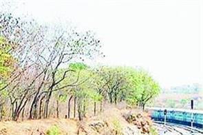 online rail ticket darshan palchi jalandhar