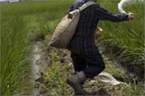 budget 2019 food fertilizer and petroleum subsidies