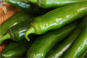 green pepper health benefits