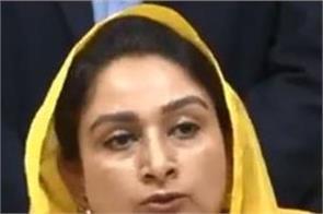 lok sabha elections 2019  amarinder singh raja waring  harsimrat kaur badal