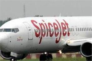 spicejet to launch 19 new flights
